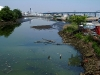 Maspeth Creek